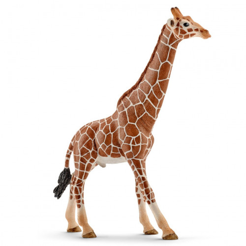 Figurina Schleich 14749, Girafa, mascul