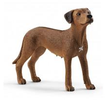 Figurina Schleich 13895, Caine Rhodesian Ridgeback