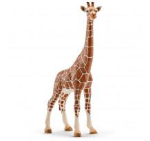 Figurina Schleich 14750, Girafa, femela