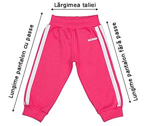 Tabelul de mărimi pentru pantalonaşi cu bandă lată în talie